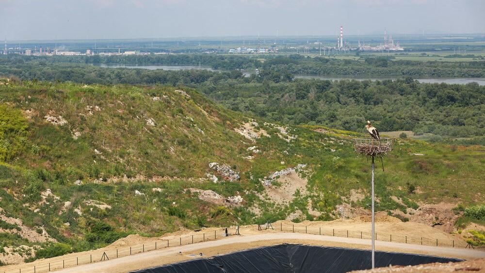 Construction site works - Uphil Platform and Nest - 4 June 2021